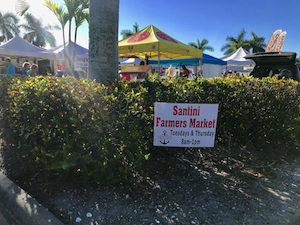 Fort Myers Beach Real Estate Farmers Market